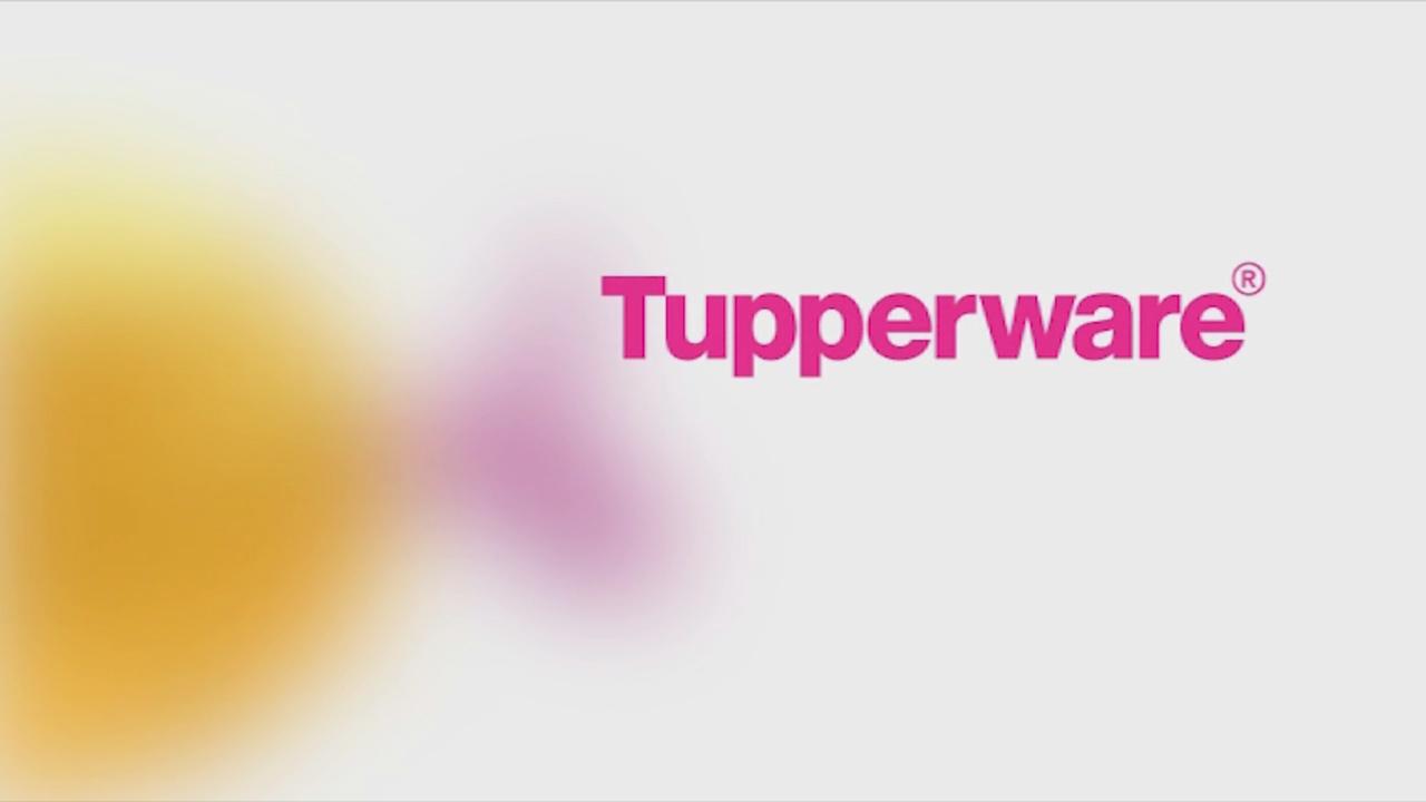Tupperware Logo 12 000 Vector Logos